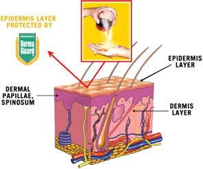 skin facts derma guard